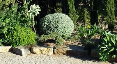Banzai Jardin Japonais