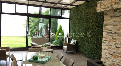 Colectivo Verde
