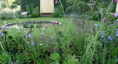 Fi Boyle Garden Design
