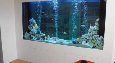 Aquarium Services