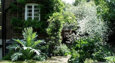 carol whitehead garden design