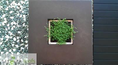 WGWRoofs - Мастерская зеленых стен и крыш
