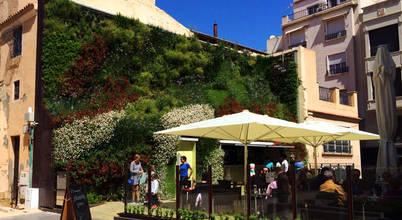 Jardines Verticales Paisajismo Urbano
