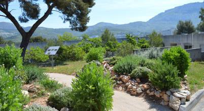 Landscape Design Environnement