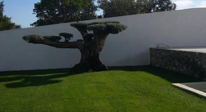 Bellerive Jardin