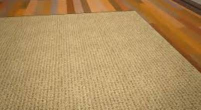 Carpet cleaners auckland
