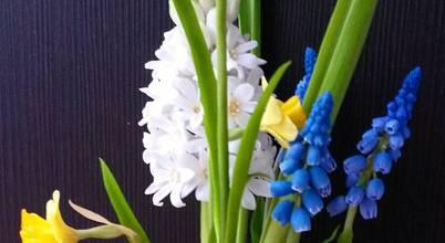 """""""Орхидея"""" школа лепки цветов из полимерных глин"""