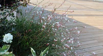 Andrea Pelleriti progettazione giardini