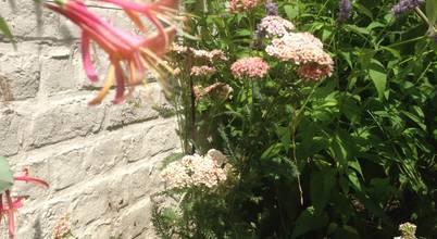Urban Garden Designer