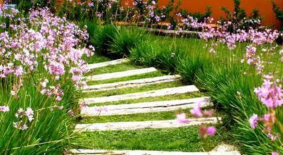 Jardineros de interior