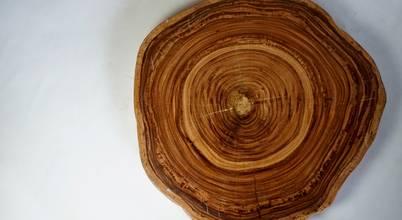 製材所 Woodfactorytc