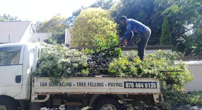 FEM TREE FELLING AND  RUBBLE REMOVALS