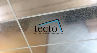 Tecto Plafon