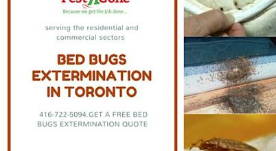 Pestrgone Pest Control Services