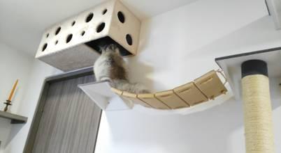 ModuCat Estructuras modulares para gatos