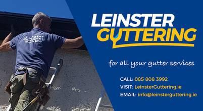 Leinster Guttering