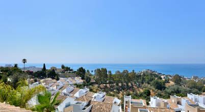 Allee Spain