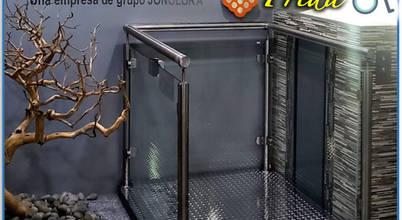 DIMASEL ELEVADORES