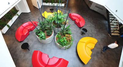 TREELOGY - Interior & Landscape Design