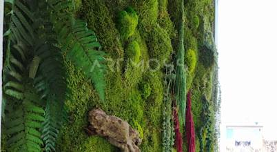 Dikey Bahçe & Yosun Duvar - Art Wall Moss