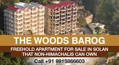 The Woods Barog