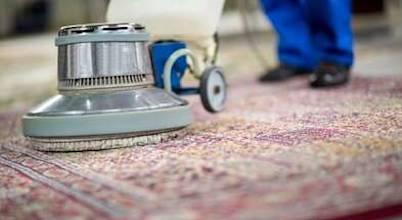 Bergen County Carpet Cleaning Pros