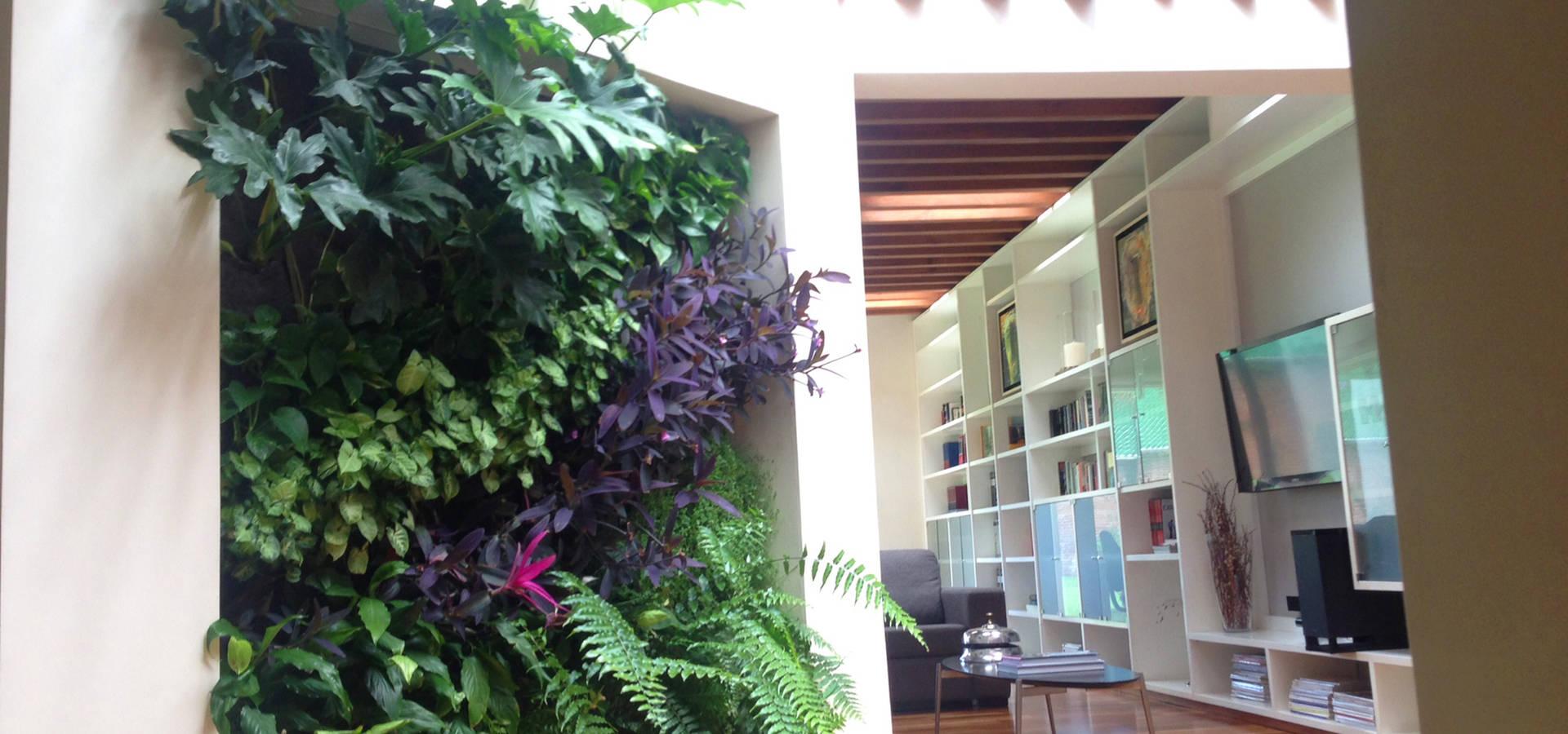 Muros verdes jardines verticales de enverde homify for Muros verdes verticales