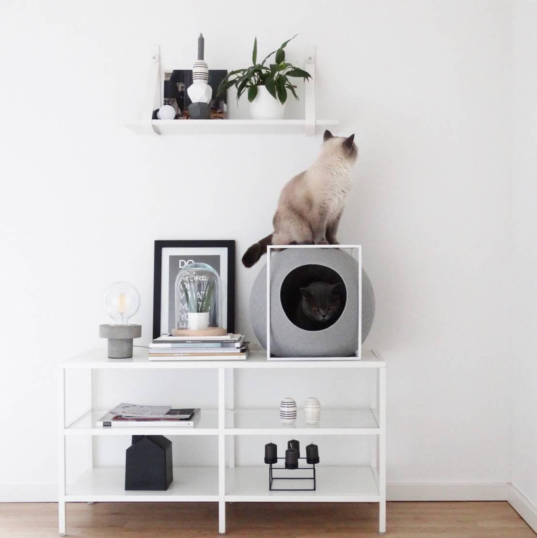 etwas neues f r die beiden samtpfoten von die moderne katze homify. Black Bedroom Furniture Sets. Home Design Ideas