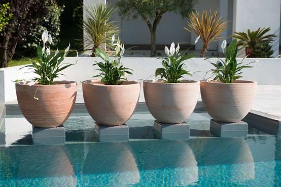 Patios modernos 10 macetas de barro encantadoras for Macetas para interiores hogar