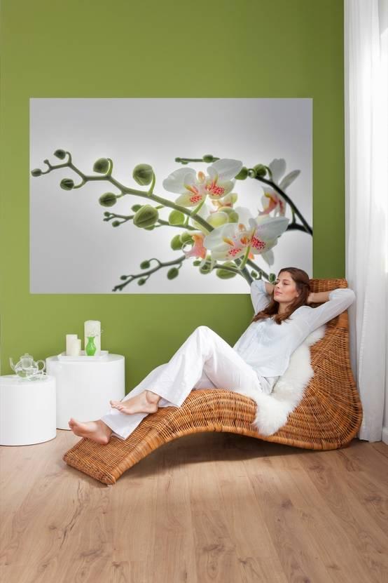 Blühende Wände – mit Fototapeten!