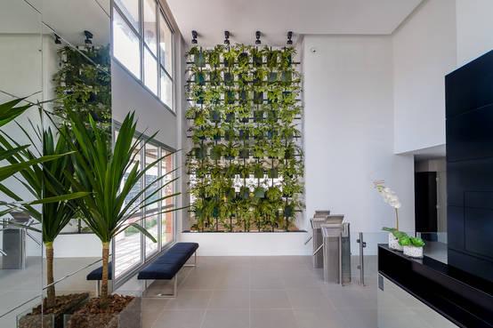 De nieuwe trend: een levende groene muur!