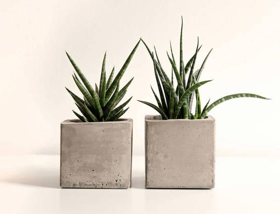 pflanzenk bel aus beton selber machen. Black Bedroom Furniture Sets. Home Design Ideas