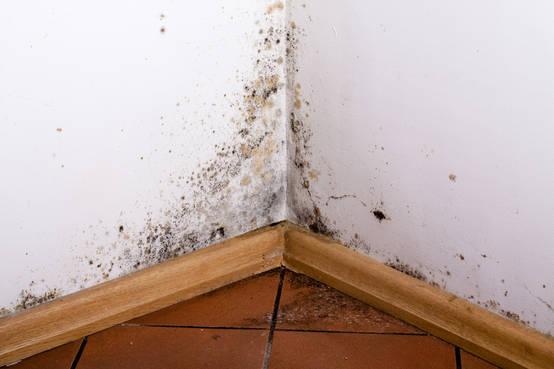 C mo eliminar la humedad por condensaci n en tu casa para siempre - Eliminar humedad por condensacion ...