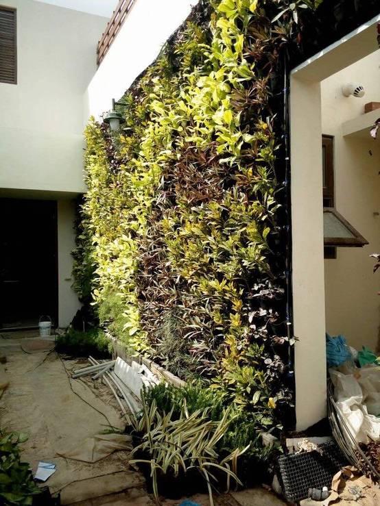 Vertical Gardens, Lifewall