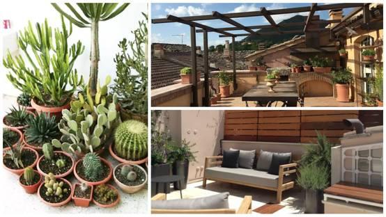 Idee outdoor per giardino terrazza e pergola a roma for Idee terrazza giardino