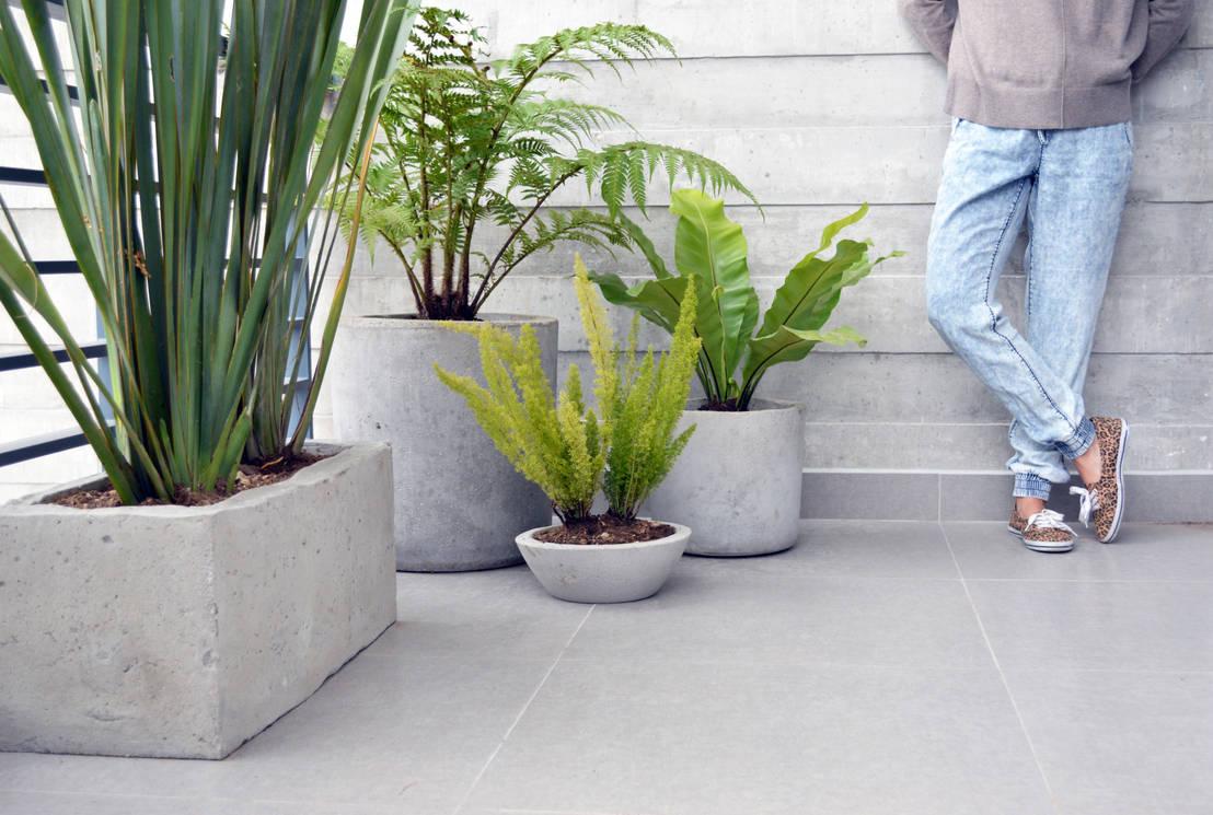 Jardines modernos 7 pasos para hacer tus propias macetas - Jardineras de cemento ...