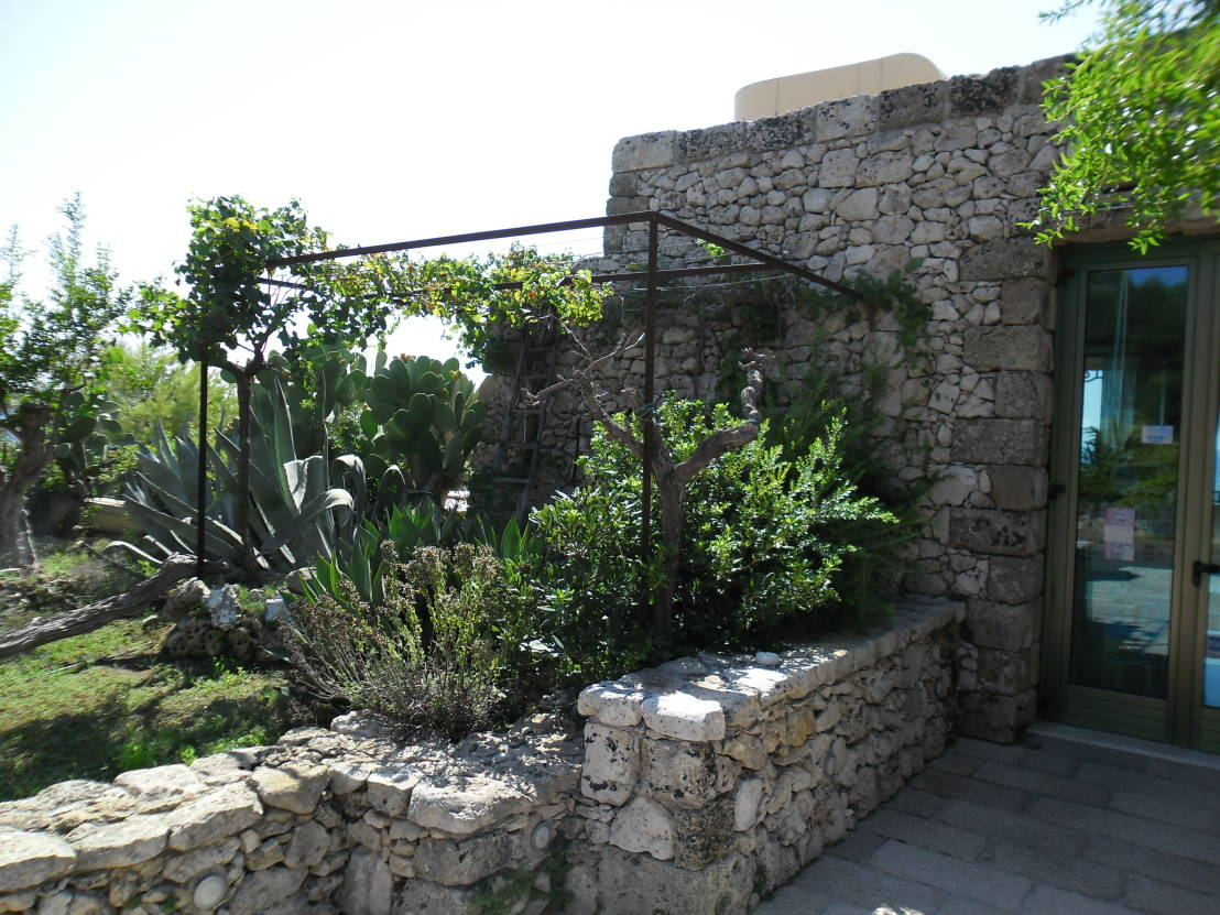 Il fascino del giardino roccioso for Giardino roccioso