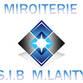 S.I.B Avatar