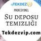 Tekdez Profil resmi/Şirket logosu
