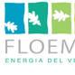 Floema srl آواتار