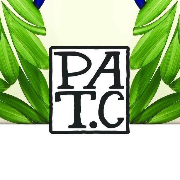 PATC Atelier Avatar