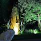 Rizzi Giardini - Garden & Exterior Design آواتار