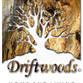 DRIFTWOODS Avatar