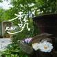 庭工房ギャラリー季気 Avatar