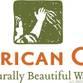 American Clay 化名