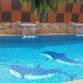 Pakinswimmingpool ตัวแทน