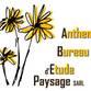 Anthemis Bureau d'Etude Paysage 化名