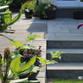Büscher Garten- und Landschaftsbau Avatar
