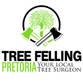 Tree Felling Pretoria Avatar