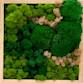 JUKO Green Design Zdjęcie profilowe/Logo firmy
